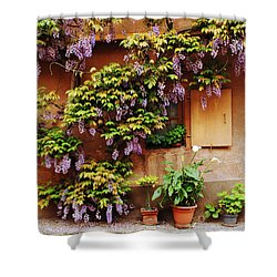 Wisteria On Home In Zellenberg 4 Shower Curtain by Greg Matchick