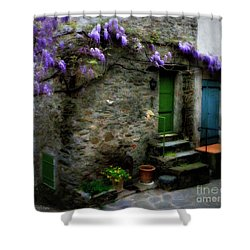 Wisteria On Stone House Shower Curtain by Lainie Wrightson
