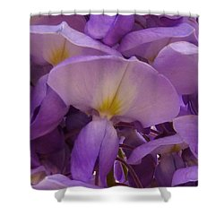 Wisteria Parasol Shower Curtain by Claudia Goodell