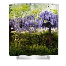 Wisteria Trellis Shower Curtain by Jessica Jenney