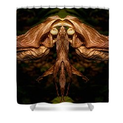 Witch Ballet Shower Curtain by WB Johnston