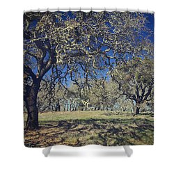With Every Step You Take Shower Curtain by Laurie Search