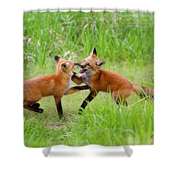 With Kit Gloves Shower Curtain by Jim Garrison