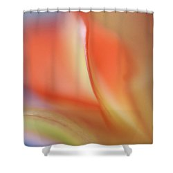 Shower Curtain featuring the photograph With Love by Annie Snel