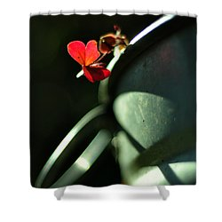 With Love Shower Curtain by Rebecca Sherman