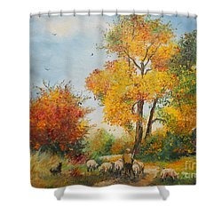 With Sheep On Pasture  Shower Curtain by Sorin Apostolescu
