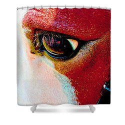 Shower Curtain featuring the photograph Within The Horse's Eyes by Annie Zeno