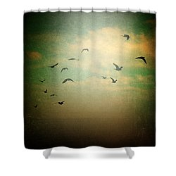 Without Shower Curtain by Taylan Apukovska