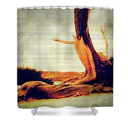 Withstanding The Storms Shower Curtain