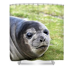 Woeful Weaner Shower Curtain