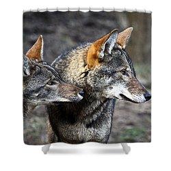 Wolf Alert Shower Curtain by Steve McKinzie