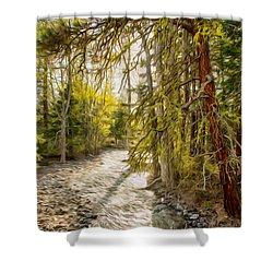 Wolf Creek Afternoon Light Shower Curtain by Omaste Witkowski
