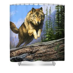Wolf Run Shower Curtain by Rob Corsetti