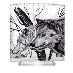 Shower Curtain featuring the drawing Wolves by Mayhem Mediums