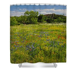 Wonder-filled Meadows Shower Curtain by Lynn Bauer
