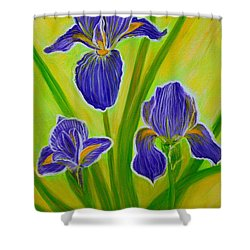 Wonderful Iris Flowers 3 Shower Curtain by Oksana Semenchenko