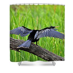 Wonderful Wings Shower Curtain by Al Powell Photography USA