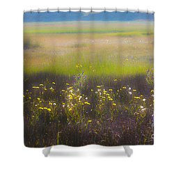 Wonderland 4 The Plains Shower Curtain