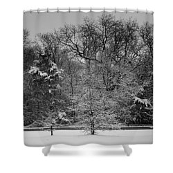 Wonderland Shower Curtain