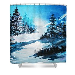 Wonders Of Winter Shower Curtain