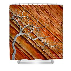 Wood And Stone Shower Curtain by Inge Johnsson