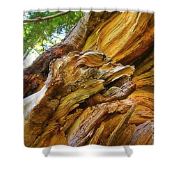 Wood Creature Shower Curtain by John Malone