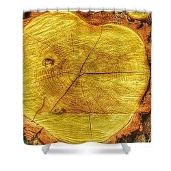 Wood Shower Curtain by Daniel Precht