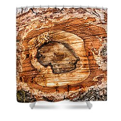Wood Detail Shower Curtain