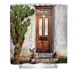 Shower Curtain featuring the photograph Wood Door In Tuscon by Ken Smith