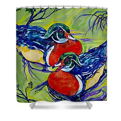 Wood Duck 2 Shower Curtain by Derrick Higgins