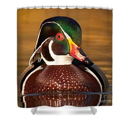 Wood Duck Shower Curtain by Jerry Fornarotto