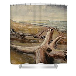 Wood Sand Water And Sky Shower Curtain