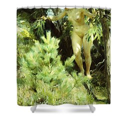 Wood-sprite Shower Curtain by Anders Leonard Zorn