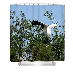Shower Curtain featuring the photograph Wood Stork by Ron Davidson