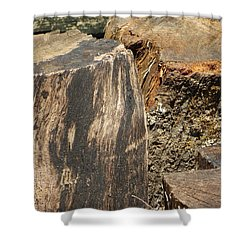 Wood You Shower Curtain by Tim Townsend
