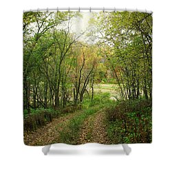 Wooded Path Shower Curtain