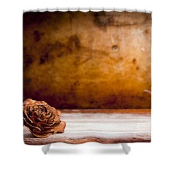 Wooden Rose Background Shower Curtain by Tim Hester