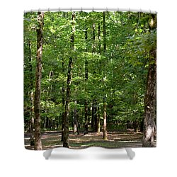 Woodforest 2013 Shower Curtain by Maria Urso