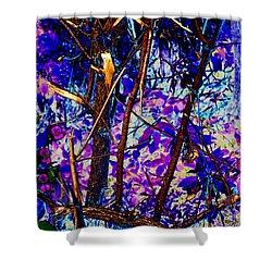 Woodland Shower Curtain by Carol Lynch