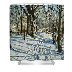 Woodland Journey Shower Curtain