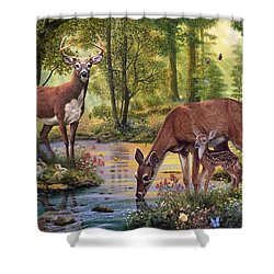 Woodland Stream Shower Curtain by Steve Read