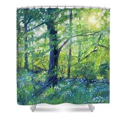 Woodland Sunset Shower Curtain by Bonnie Mason