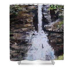Woodland Waterfall Shower Curtain by Jack Skinner