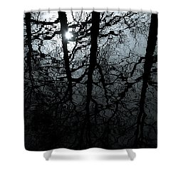 Woodland Waters Shower Curtain by Dave Bowman