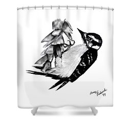Shower Curtain featuring the drawing Woodpecker by Terry Frederick