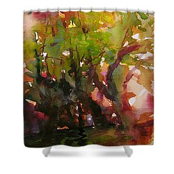 Woods And Creek Watercolor Shower Curtain by Julianne Felton