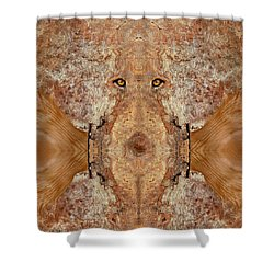 Woody 45 Shower Curtain by Rick Mosher