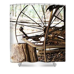 Shower Curtain featuring the photograph Woody And Wheely by Faith Williams