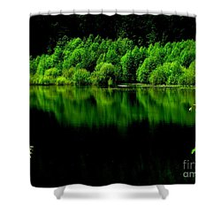 Work In Green Shower Curtain by Greg Patzer