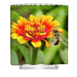 Working Bee Shower Curtain